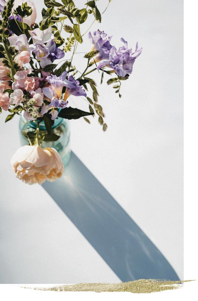 Full bloom visual identuty